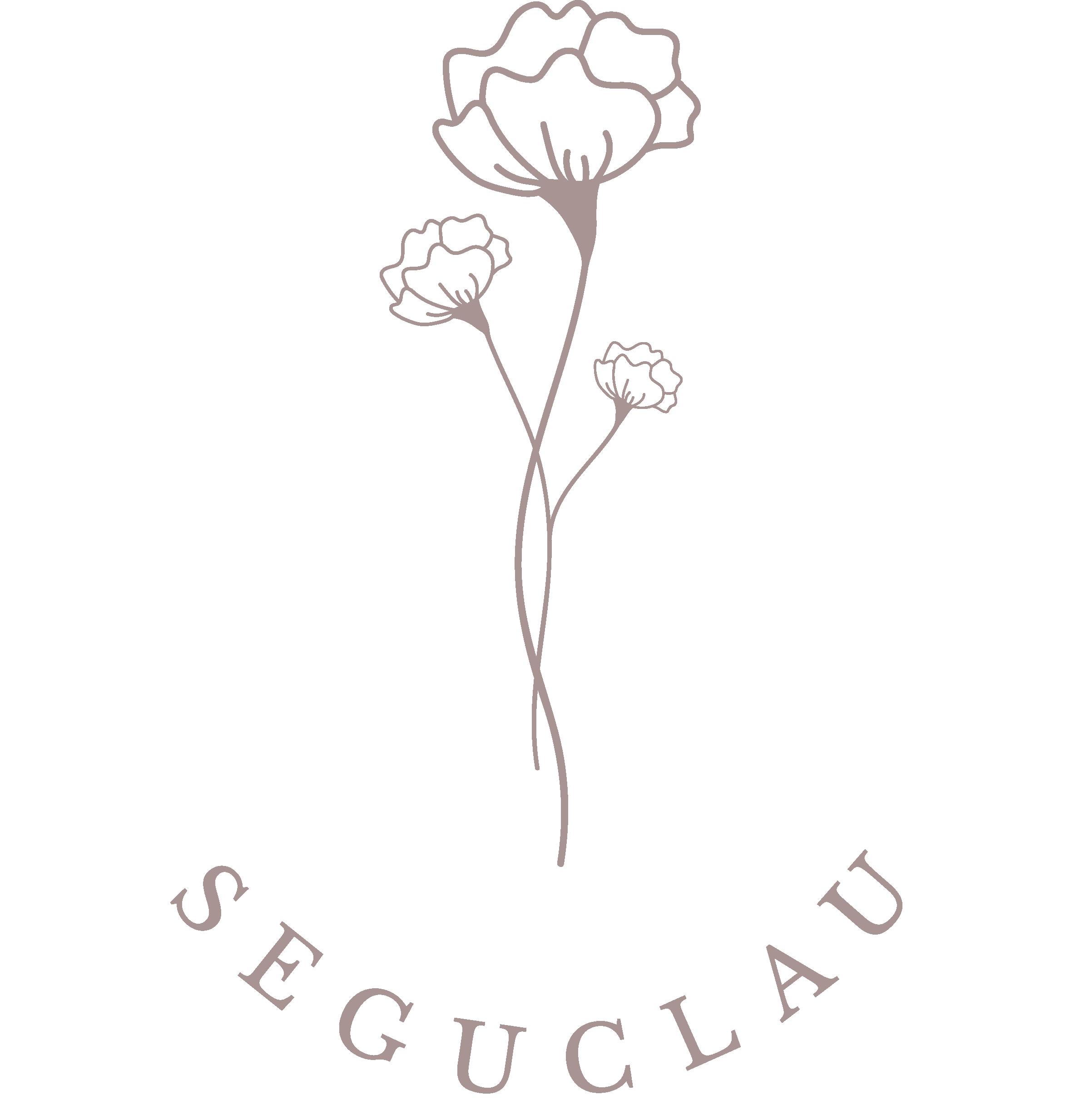 logo-seguclau-color
